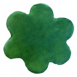 green flower cookie